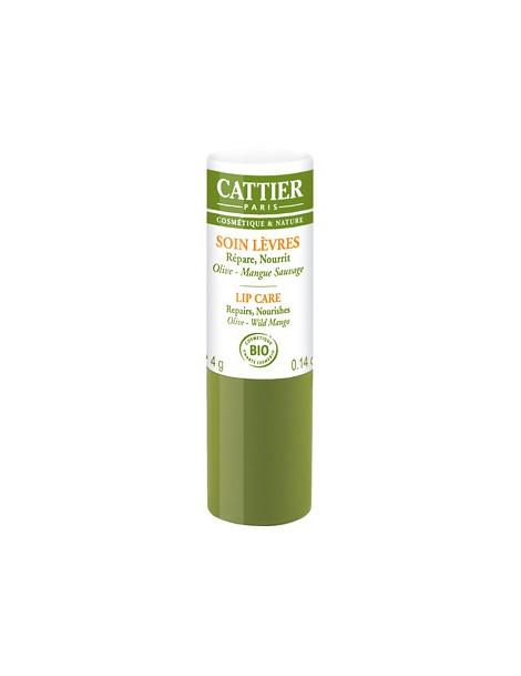 Baume à lèvres réparateur et ultra nourrissant Olive Mangue 4g Cattier