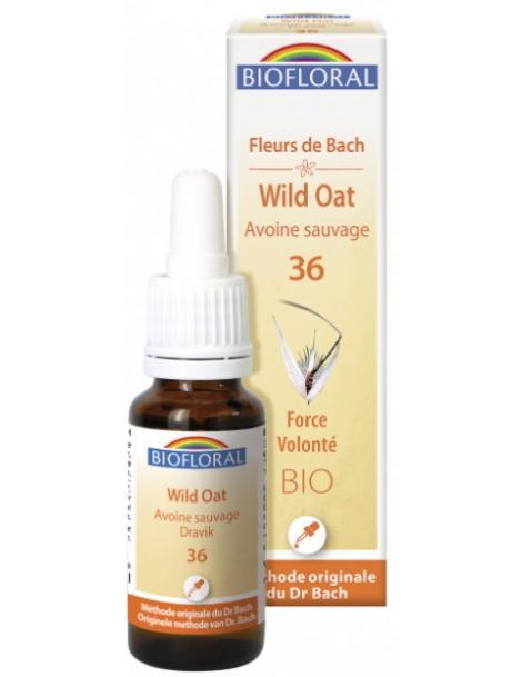 Elixir Avoine Sauvage, Wild Oat n°36 20 ml Biofloral