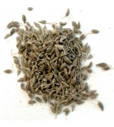 ANIS VERT BIO FRUIT 100g Herboristerie de paris carminative problèmes digestifs ballonnements
