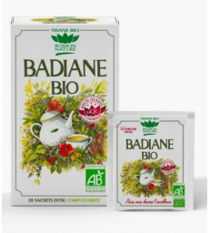 Tisane Badiane bio 20 sachets Romon Nature
