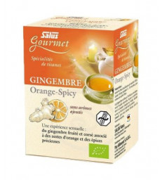 Tisane Gourmet Gingembre Orange spicy Bio 15 sachets Salus