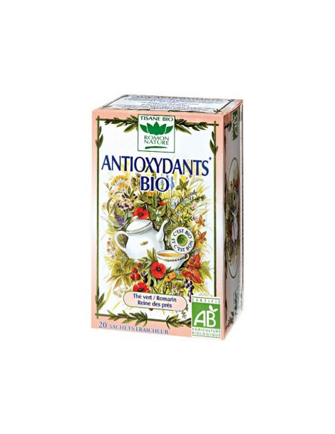 Tisane Antioxydants bio 20 sachets 34g Romon Nature