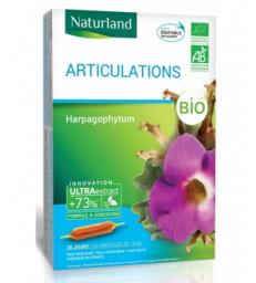 Harpagophytum Bio 20 ampoules de 10ml Naturland