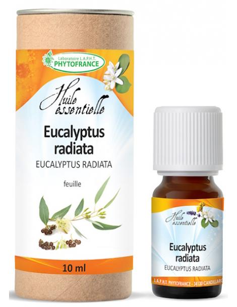 Huile essentielle Eucalyptus Radiata Bio 10 ml Phytofrance