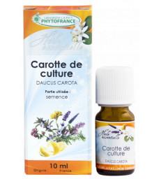 Huile essentielle de Carotte fruit 10 ml Phytofrance