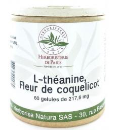 Dolupérine Holistica Lot de 3 boîtes de 60 gélules curcuma pipérine gingembre