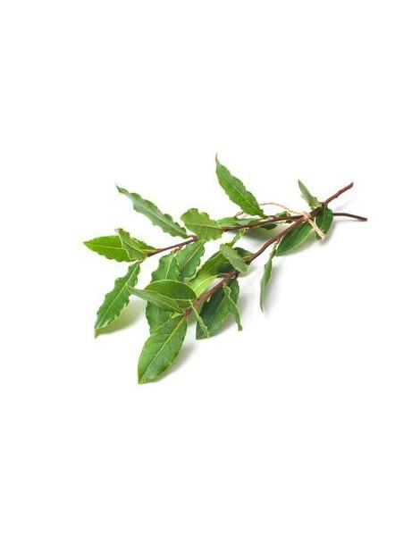 Boisson d'Eau florale Adolescence 200ml Biotope Des Montagnes