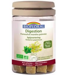 Cubes à mâcher Digestion 60 cubes Biofloral