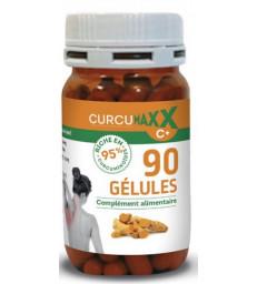 Curcumaxx 95 pour cent de curcuminoïdes 90 gélules Biocible