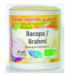 Bacopa Brahmi BIO 60 gélules Phytofrance