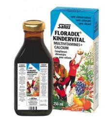 Floradix Kindervital 250 ml SALUS