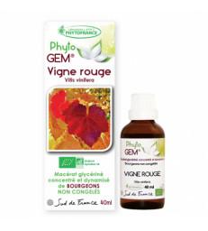 Phyto' Gem Vigne rouge 40ml Phytofrance