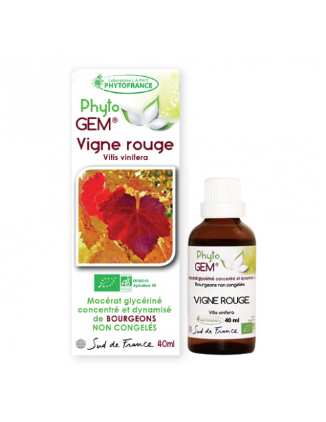 phyto'gemm Vigne rouge 40ml Phytofrance vitis vinifera gemmothérapie jambes lourdes Herboristerie de paris