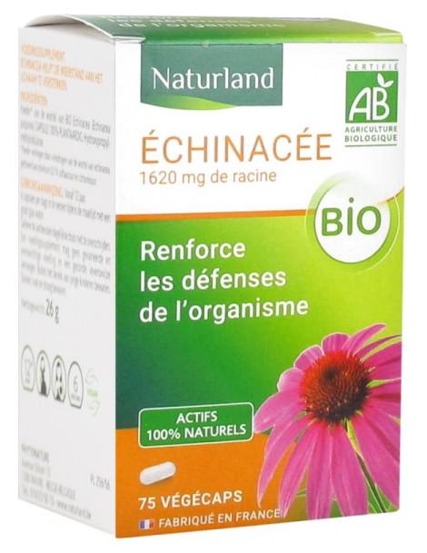 Echinacée Bio 75 gélules végétales Naturland echinacea pourpre Herboristerie de paris
