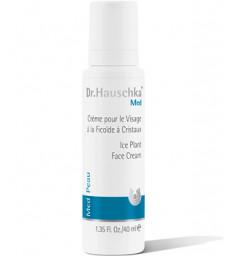 Crème pour le visage à la Ficoïde à Cristaux 40ml Dr. Hauschka