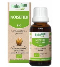 Noisetier bio Flacon compte gouttes 50ml Herbalgem Gemmobase