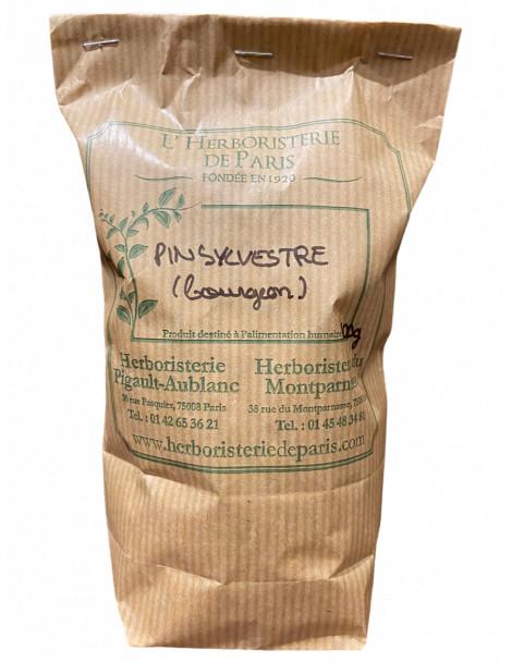 Pin Sylvestre 100 gr Herboristerie de Paris