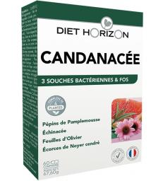 Candinacée Solution Candida 60 comprimés Diet Horizon
