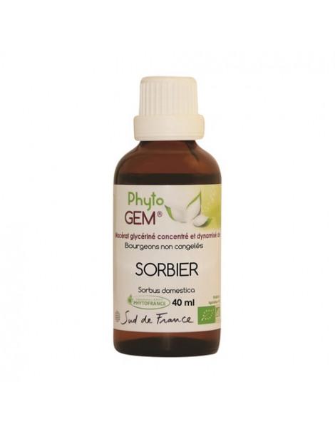 Gemmo Sorbier 40ml Phytofrance