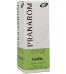 Huile essentielle de Giroflier Clou de Girofle Bio Flacon compte gouttes 10ml Pranarôm