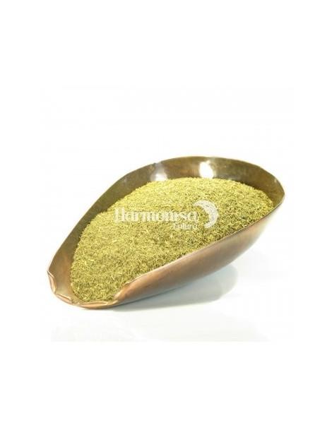 Aneth feuilles bio 100 gr Herboristerie de Paris